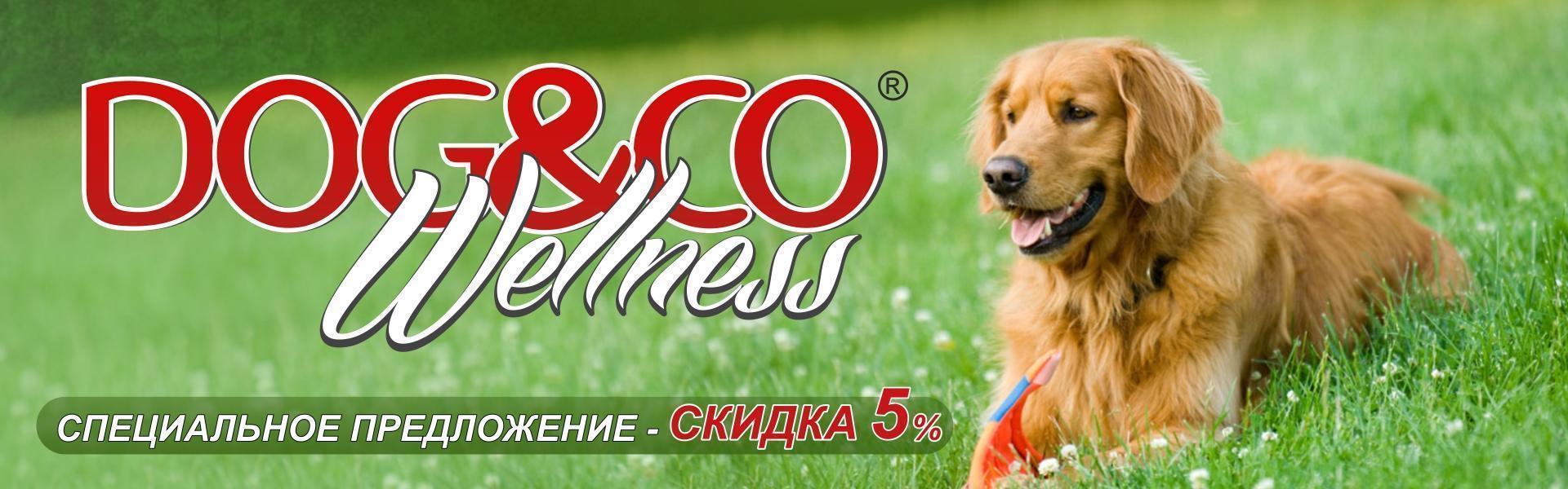 Dog&Co Wellness - специальное предложение скидка 5%!