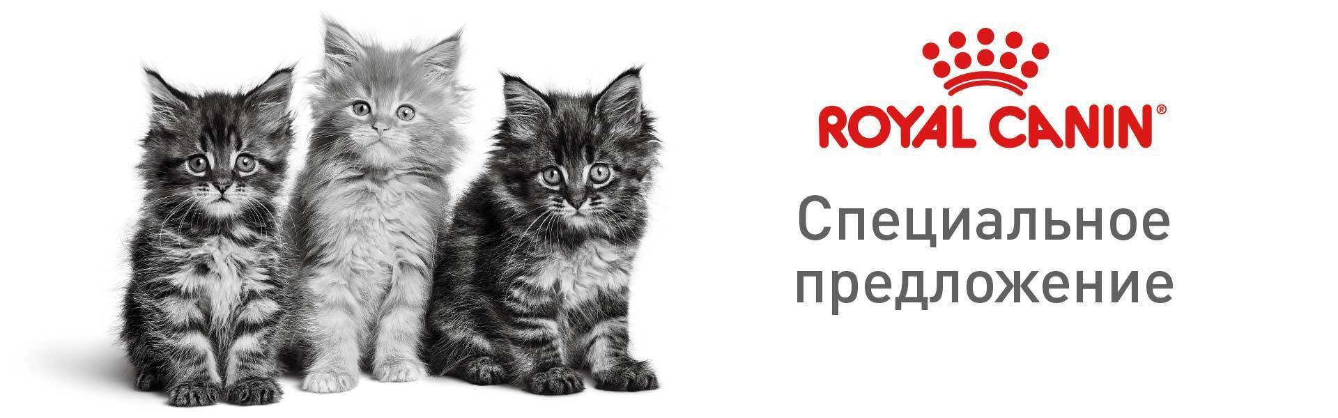 Royal Canin - здоровое питание для собак и кошек!