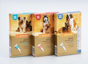 Bayer Advocate капли от блох и клещей для собак (3 пипетки)