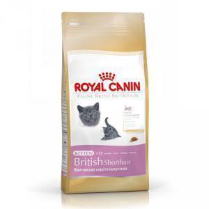 Royal Canin British Shorthair Kitten сухой корм для котят британской породы 10 кг