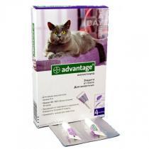 Bayer Advantage капли для кошек от блох
